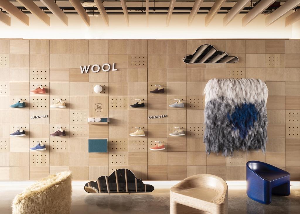 Allbirds Store Expansion: Shoe Startup