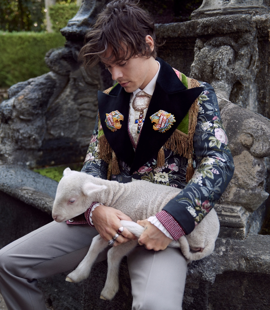 Harry Styles, Gucci