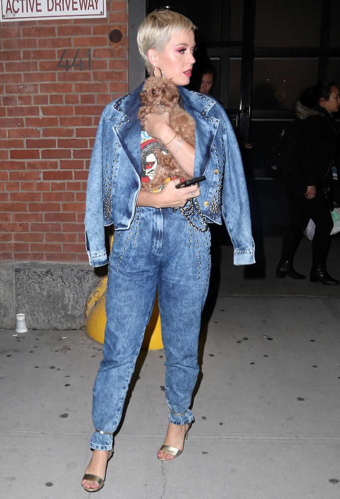 katy perry, silver heels, dog, jeans