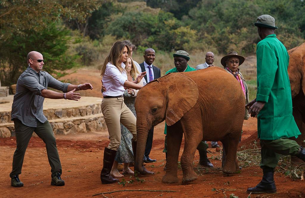 Two rambunctious baby elephants bump into First lady Melania Trump as she pets one at David Sheldrick Elephant & Rhino Orphanage at Nairobi National Park in Nairobi, Kenya, . Mrs. Trump is visiting Africa on her first big solo international tripMelania Trump Africa, Nairobi, Kenya - 05 Oct 2018