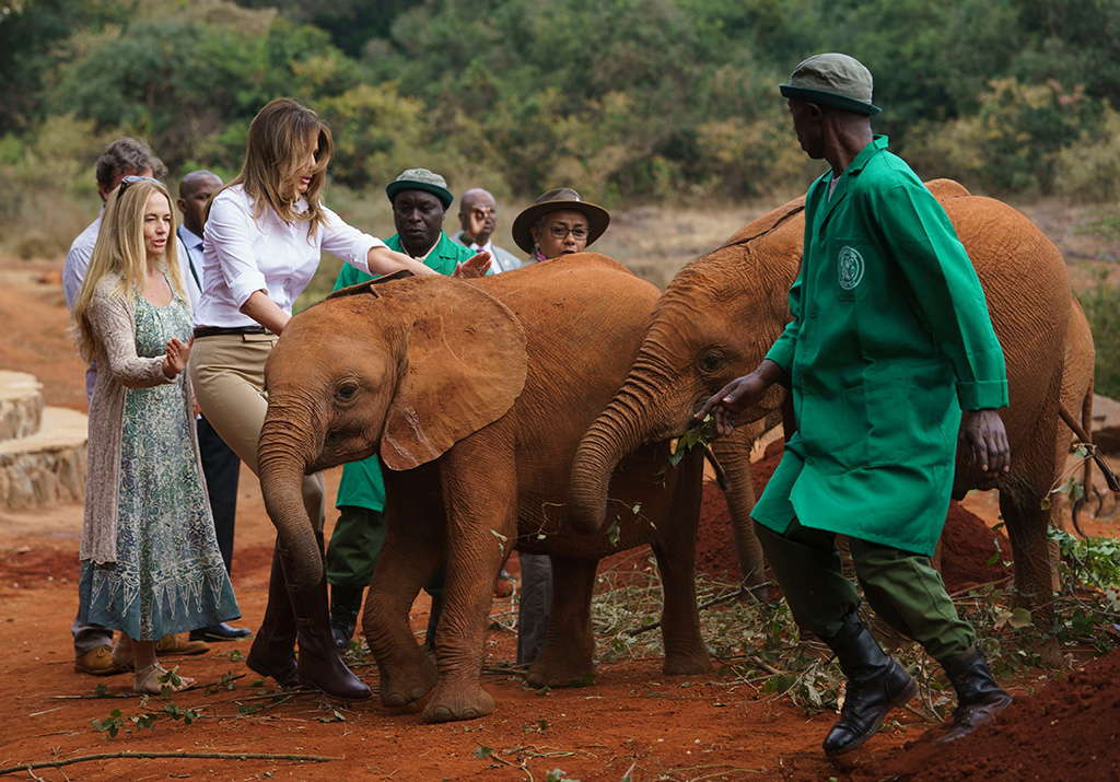 Two rambunctious baby elephants bump into First lady Melania Trump as she pets one at David Sheldrick Elephant & Rhino Orphanage at Nairobi National Park in Nairobi, Kenya, . The first lady is visiting Africa on her first big solo international tripMelania Trump Africa, Nairobi, Kenya - 05 Oct 2018
