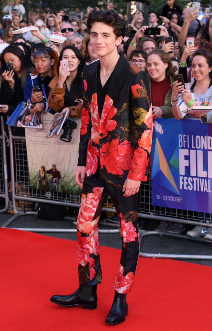 BFI London Film Festival, timothee chalamet, red carpet, alexander mcqueen fall 2018, christian louboutin chelsea boots
