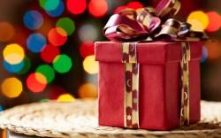 christmas holiday gift