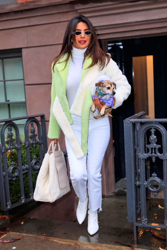 Priyanka Chopra, dog, diana, nyc, fashion, celebrity style, street style, fur coat