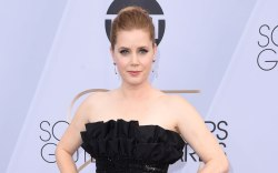 Amy Adams, red carpet, sag awards