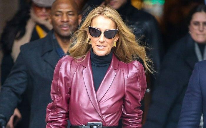 Céline Dion, paris, haute couture fashion week, celebrity style