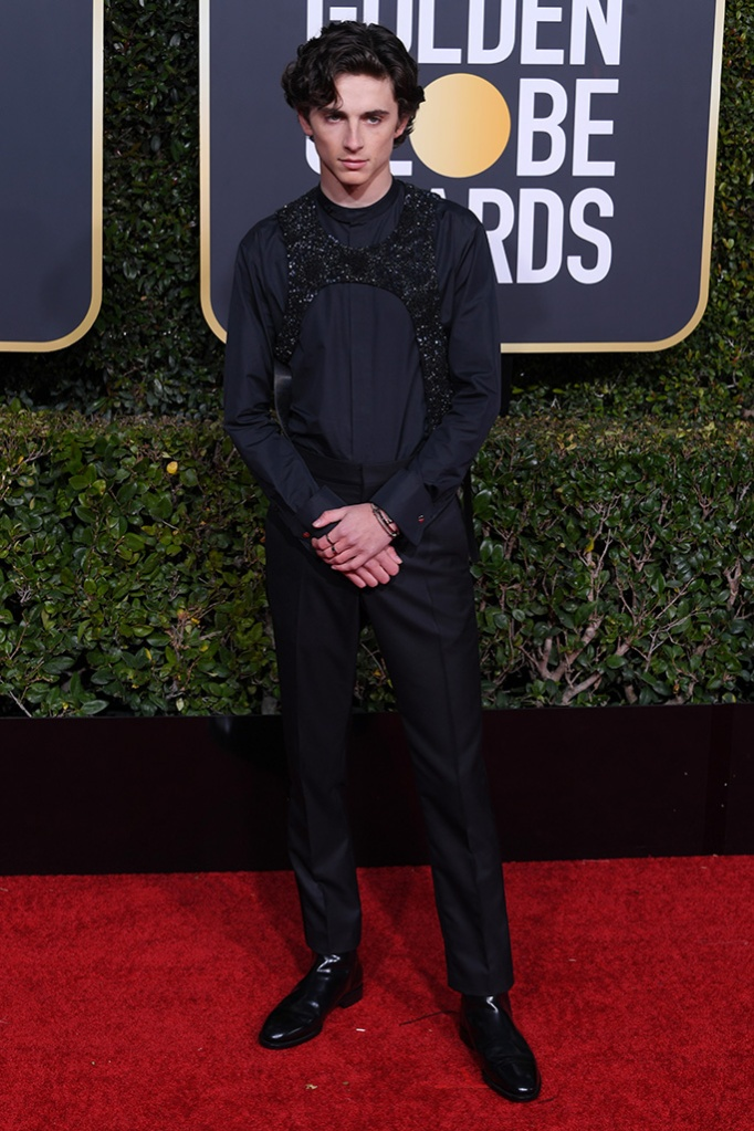 Timothee Chalamet76th Annual Golden Globe Awards, Arrivals, Los Angeles, USA - 06 Jan 2019