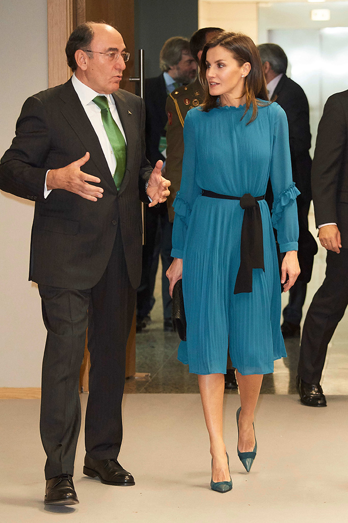 Queen LetiziaDelivery of the 'Grants for Master's and Research Aid' of the Fundacion Iberdrola, Madrid, Spain - 31 Jan 2019