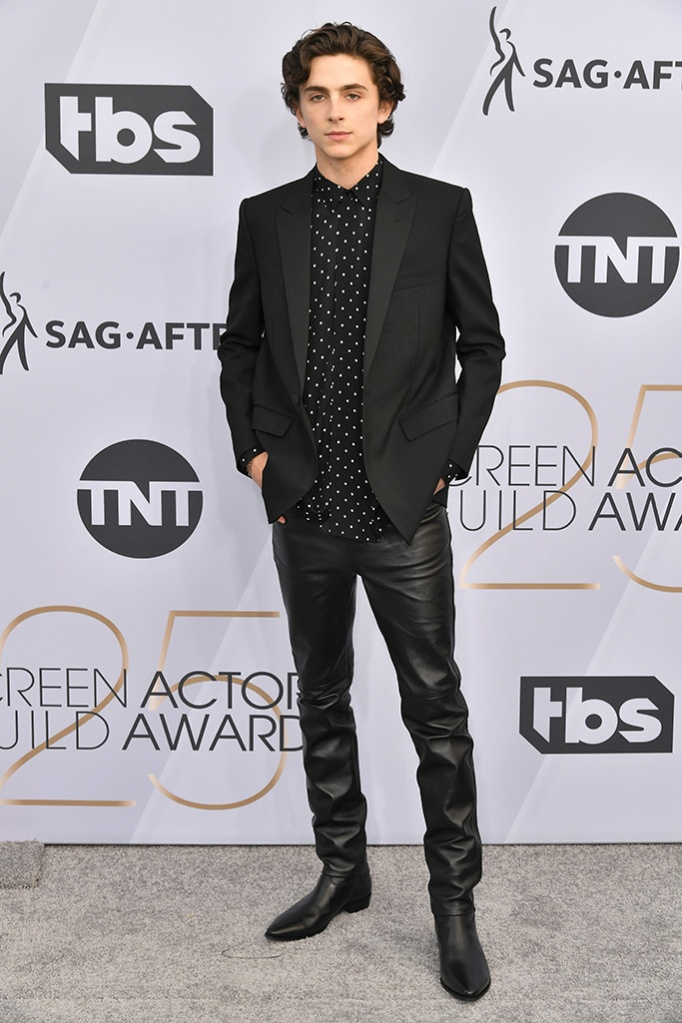Timothee Chalamet25th Annual Screen Actors Guild Awards, Arrivals, Los Angeles, USA - 27 Jan 2019
