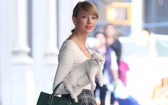 Taylor Swift Starring In Cats All The Times She Wore Cat Themed Looks Footwear News