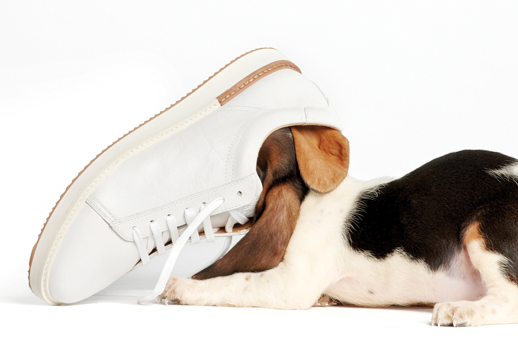 hush puppies most comfortable shoes