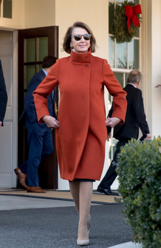 nancy pelosi, max mara