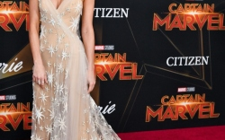Brie Larson's Red Carpet Style Evolution