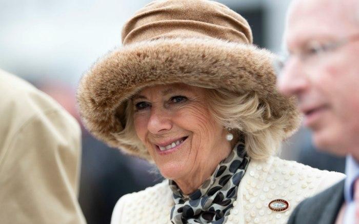 camilla duchess of cornwall, cheltenham ladies day