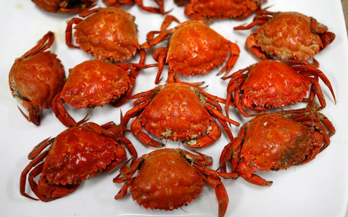 A plate of cooked green crabs is seen, in Portland, Maine. Food scientists have gathered in Portland to find a way to monetize invasive green crabs, which are a major pest in shellfish harvesting communitiesUS Crab Conference, Portland, USA - 06 Jun 2018