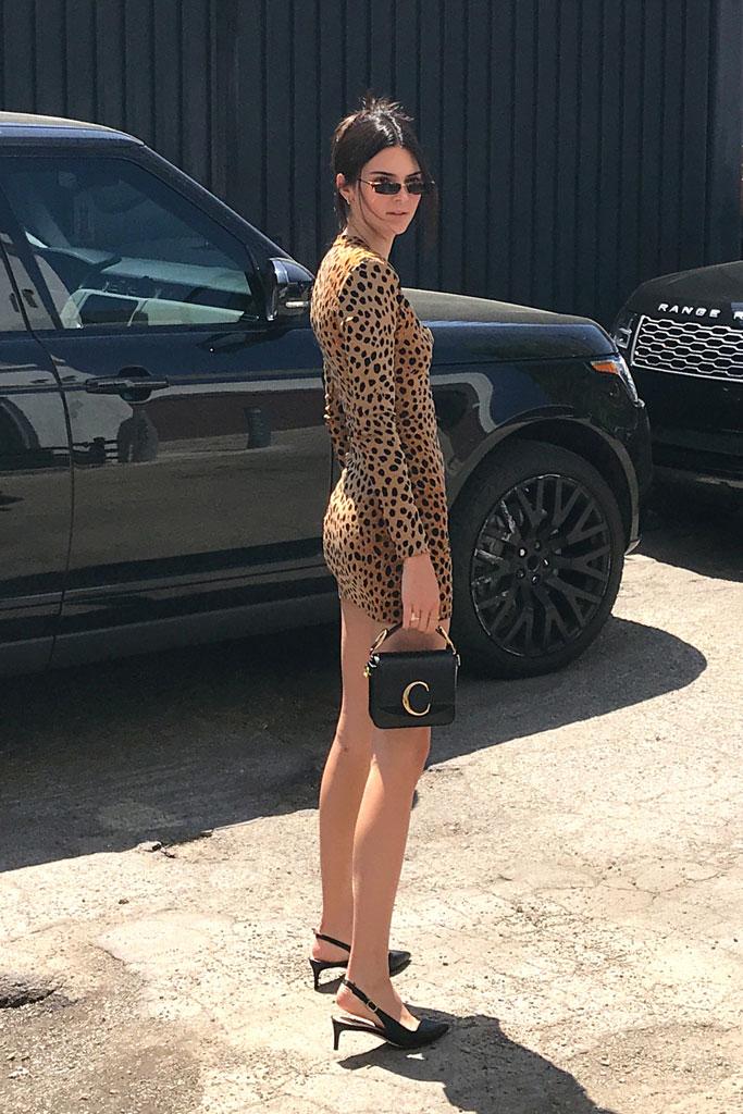 kendall jenner , celebrity style, stuart weitzman, christopher kane edith, resort 2019, leopard print, sunglasses, chloe handbag