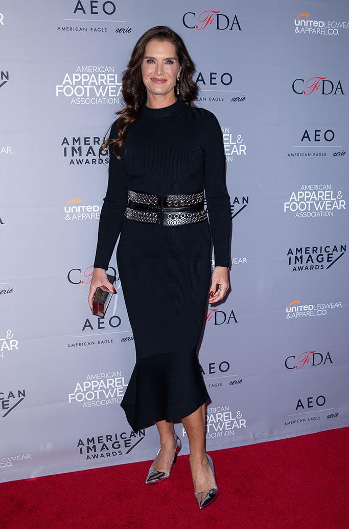 Brooke Shields AAFA American Image Awards, New York, USA - 15 Apr 2019