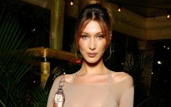 Bella Hadid at a Canne dinner.