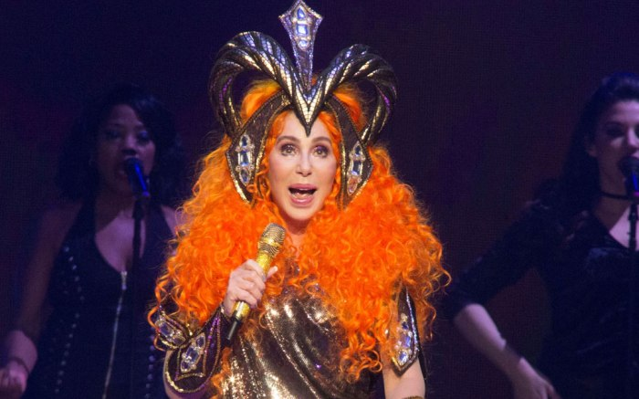 Cher, 2019 met gala, here we go again tour
