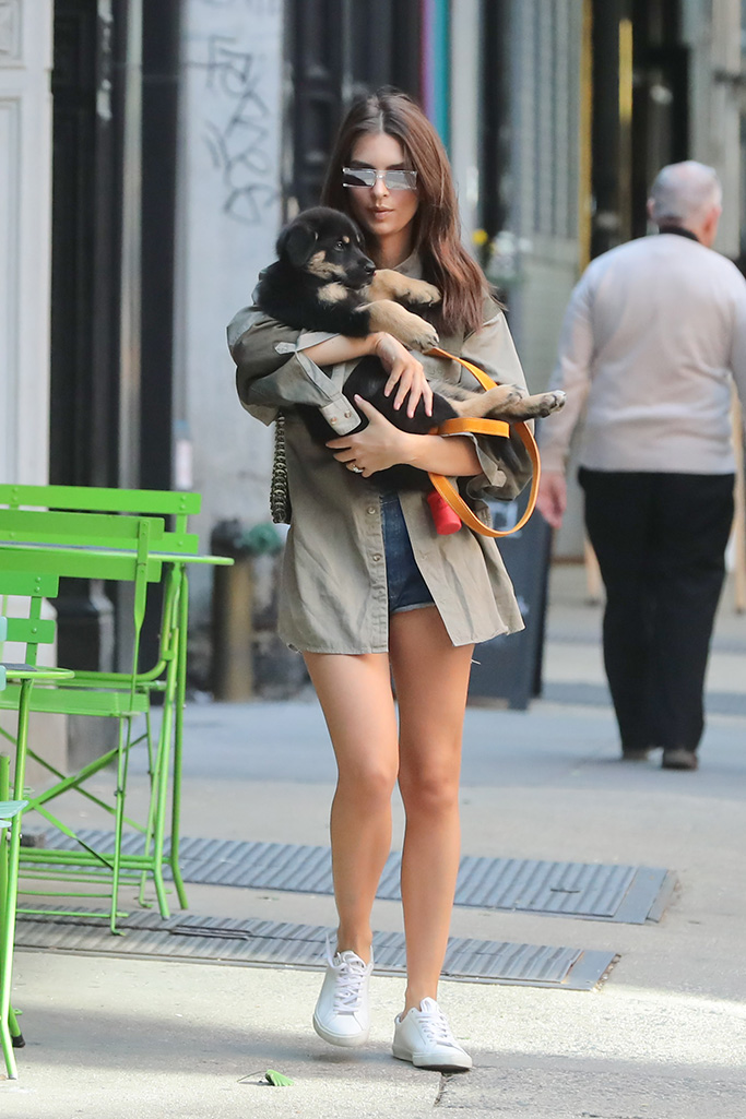 Emily Ratajkowski, veja sneakers, legs, celebrity style, colombo, steps out New York with her dogPictured: Emily RatajkowskiRef: SPL5093383 240519 NON-EXCLUSIVEPicture by: SplashNews.comSplash News and PicturesLos Angeles: 310-821-2666New York: 212-619-2666London: 0207 644 7656Milan: 02 4399 8577photodesk@splashnews.comWorld Rights