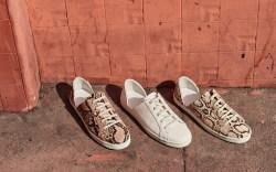Freda Salvador, sneaker, spring shoes