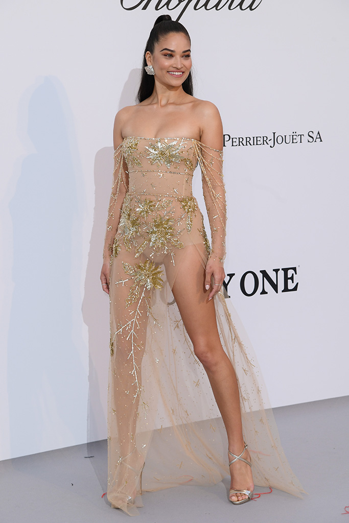 Shanina ShaikamfAR's 26th Cinema Against AIDS Gala, Arrivals, 72nd Cannes Film Festival, France - 23 May 2019 The star-studded event will include a black-tie dinner, a celebrity-filled live auction, a runway show of exclusive looks curated by Carine Roitfeld, and special performances by Mariah Carey, Dua Lipa, Tom Jones, and The Struts. amfAR, The Foundation for AIDS Research, is one of the world's leading nonprofit organizations dedicated to the support of AIDS research, HIV prevention, treatment education, and advocacy. Since 1985, amfAR has invested nearly $550 million in its programs and has awarded more than 3,300 grants to research teams worldwide