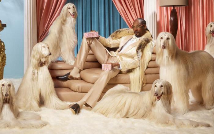 Snoop Dogg Klarna Ad
