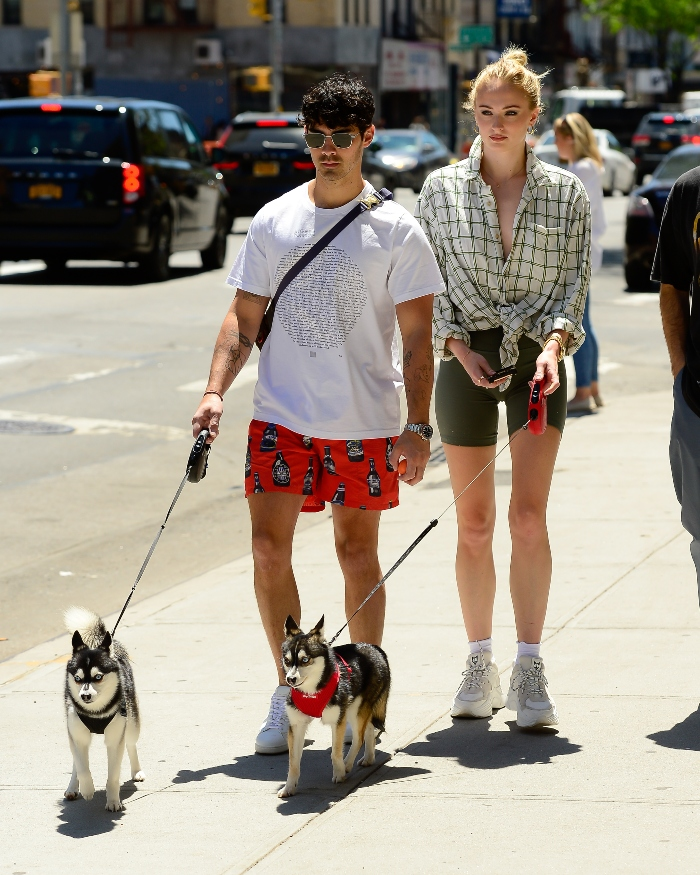 sophie turner, joe jonas, dogs, white sneakers, new york, walk dogs