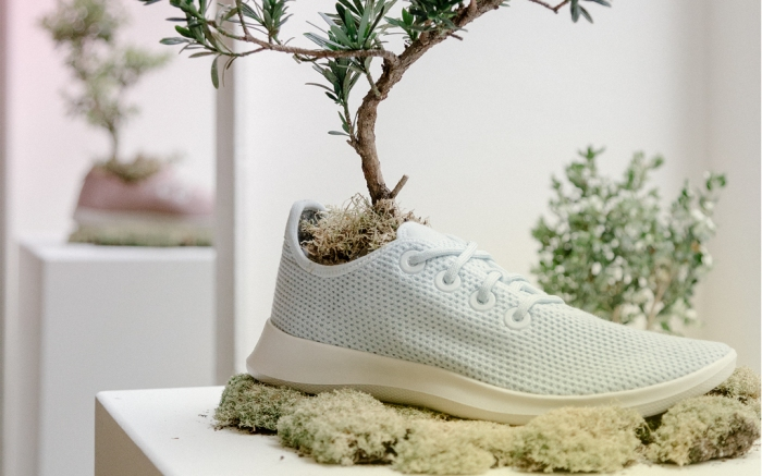 Allbirds Trea Sneaks with tree growing out of shoe