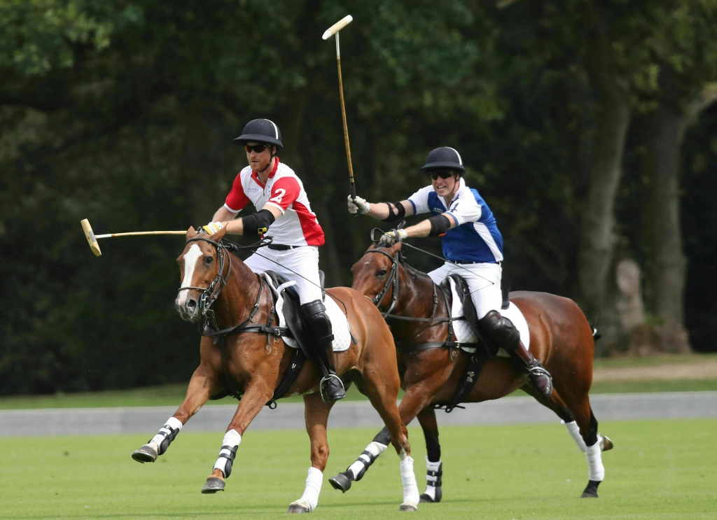 Prince Harry and Prince William at a charity polo match in Surrey