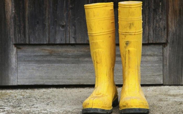 rain boots, mens, shop