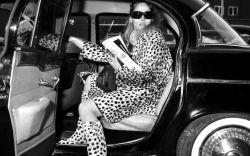 leopard, print, trend