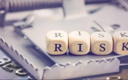 Risk and e-commerce fraud