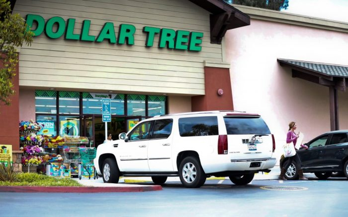 A shopper leaves a Dollar Tree store in Encinitas, Calif. On Thursday, Aug. 25, Dollar Tree reports financial resultsEarns Dollar Tree, San Diego, USA - 26 May 2016