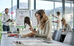 Digital Workplace Tools, hive, asana