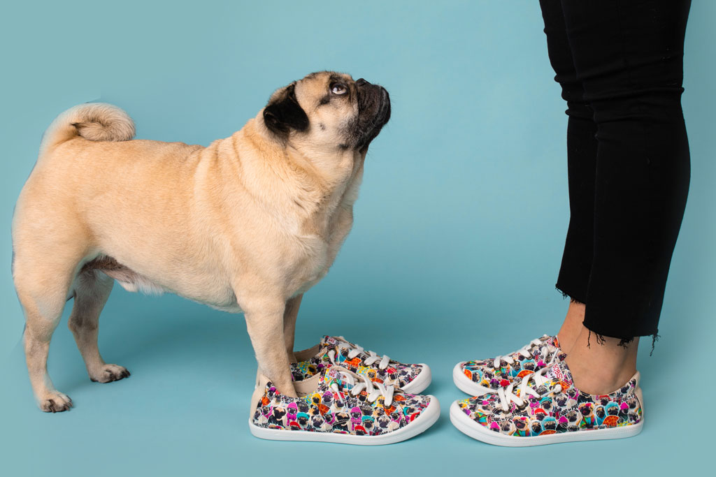 Doug the Pug, bobs from skechers