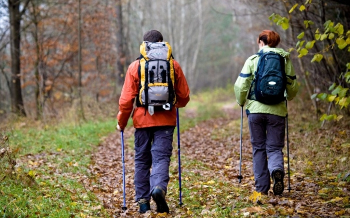 hikers using trekking poles