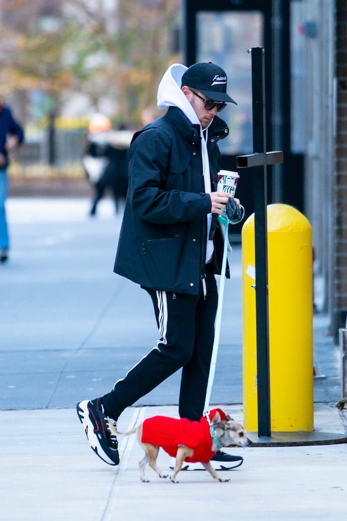 Nick Jonas seen walking Priyanka's dog Diana in New York City Pictured: Ref: SPL5132513 301119 NON-EXCLUSIVE Picture by: Peter Parker / SplashNews.com Splash News and Pictures Los Angeles: 310-821-2666 New York: 212-619-2666 London: +44 (0)20 7644 7656 Berlin: +49 175 3764 166 photodesk@splashnews.com World Rights