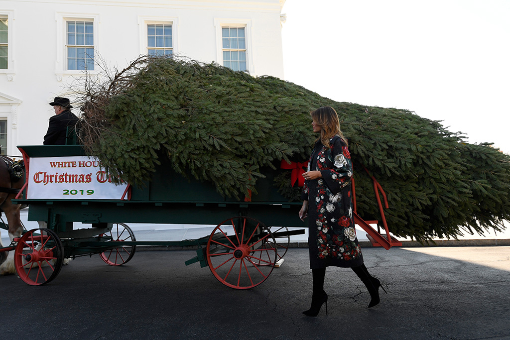 dolce gabbana coat, dg coat, christian louboutin boots, First lady Melania Trump looks over the 2019 White House Christmas tree as it is delivered to the White House in Washington, . The Douglas fir is approximately 23 feet tall and was grown by Larry and Joanne Snyder at Mahantongo Valley Farms in Pennsylvania. Since 1966, the National Christmas Tree Association has held a contest that awards its winner with the honor of presenting their tree to the first family and will serve as a centerpiece for Christmas decorations in the Blue Room of the White HouseTrump Christmas Tree, Washington, USA - 25 Nov 2019