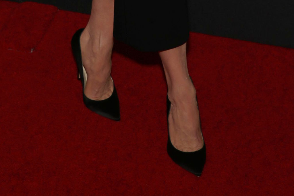Renee Zellweger, jimmy choo anouk pumps, jimmy choo shoes, celebrity style, red carpet, 23rd Annual Hollywood Film Awards, Arrivals, Beverly Hilton, Los Angeles, USA - 03 Nov 2019