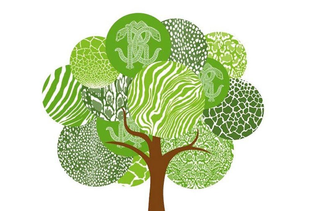 Roberto Cavalli Group, Treedom