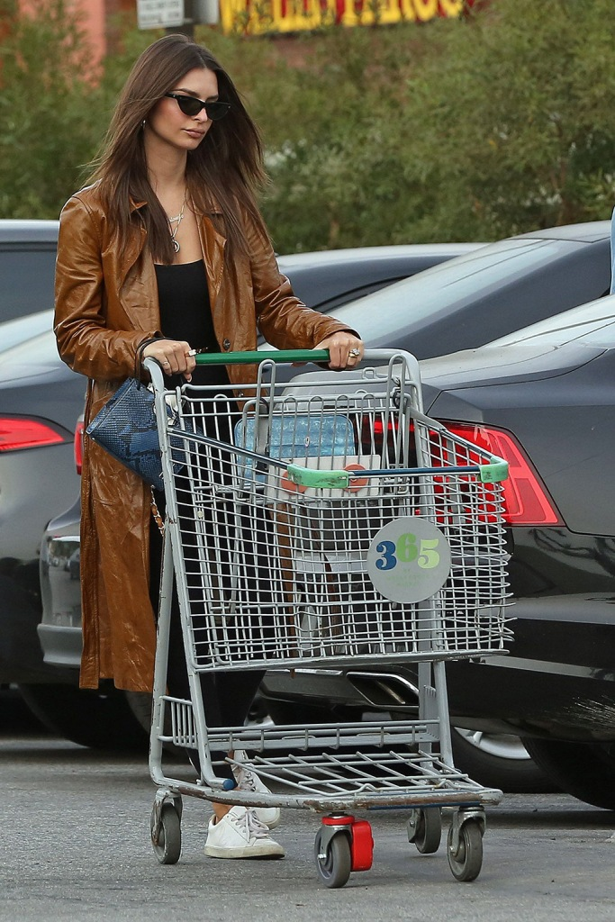 Emily Ratajkowski, emrata, leather coat, black catsuit, inamorata, white sneakers, veja shoes, oliver peoples sunglasses, python print bag, shopping cart, and her husband Sebastian Bear-McClard out grocery shopping in Los Angeles, CA. 21 Dec 2019 Pictured: Emily Ratajkowski and her husband Sebastian Bear-McClard out grocery shopping in Los Angeles, CA. Photo credit: P&P / MEGA TheMegaAgency.com +1 888 505 6342 (Mega Agency TagID: MEGA572876_017.jpg) [Photo via Mega Agency]