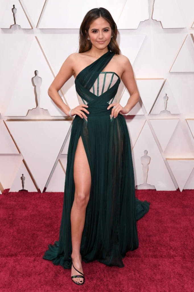 Erin Lim, red carpet, oscars, academy awards, celebrity style, gianvito rossi shoes