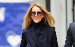 Celine Dion, street style, nyc
