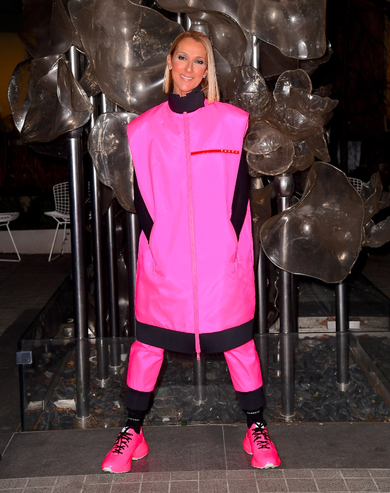 celine dion, hot pink, prada, neon, shoes, pink, sneakers, balenciaga