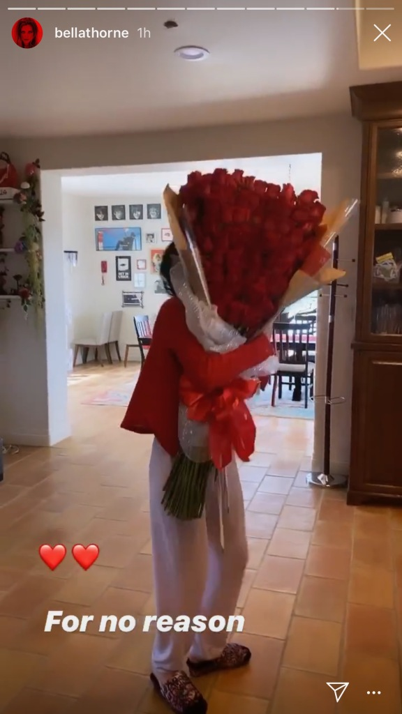 bella thorne, instagram, roses, red, slides
