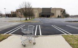An empty shopping cart in an