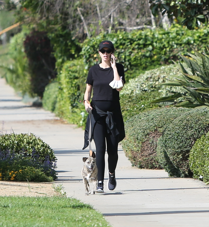 katherine Schwarzenegger, style, shoes, dog, walk, new balance, black, pregnant