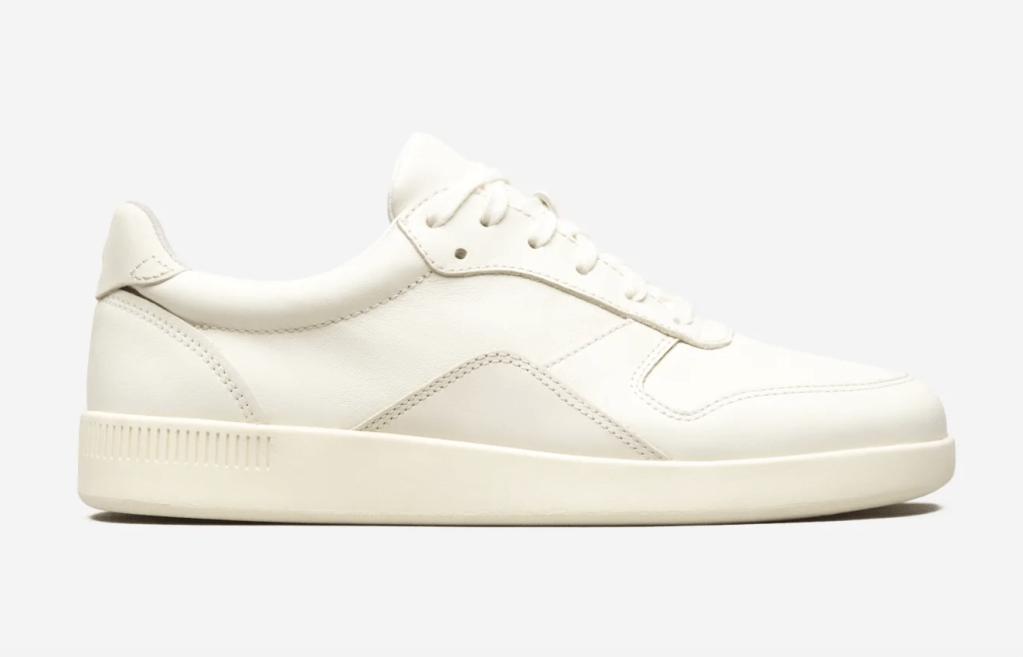 everlane court sneaker, best everlane sneaker, white sneaker