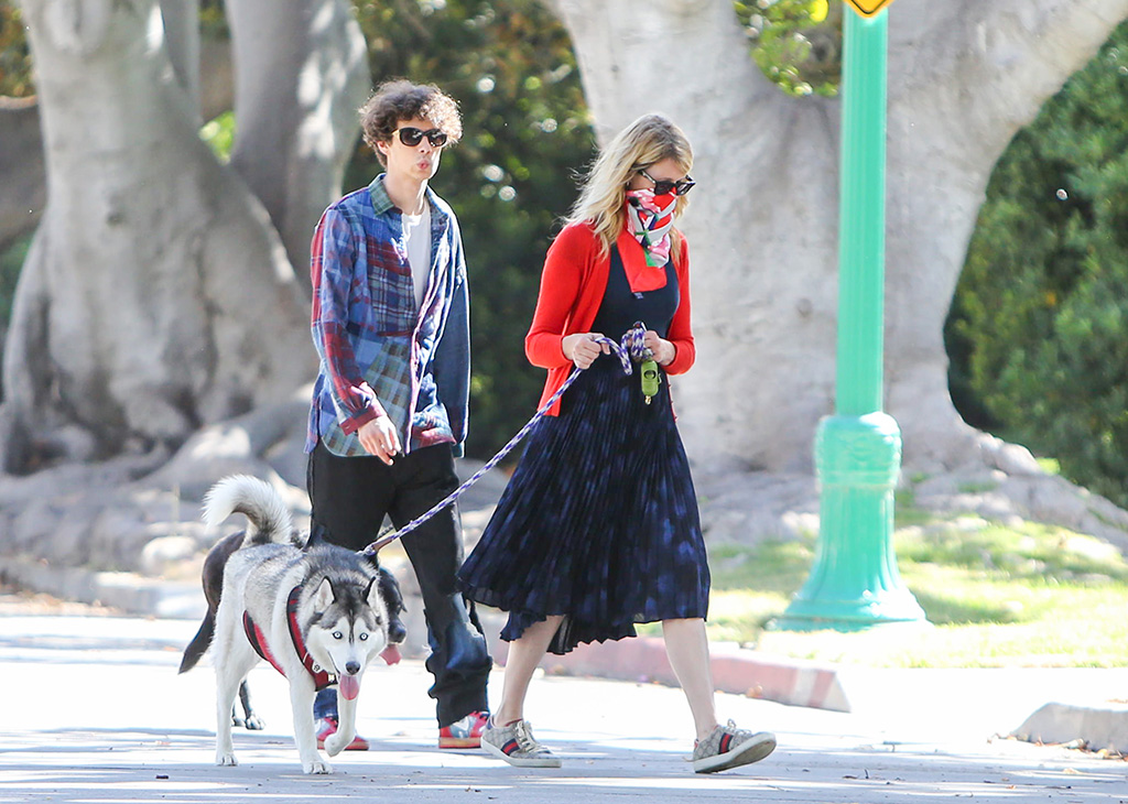 Laura Dern, son, ellery harper, Laura Dern, gucci sneakers, street style, red cardigan, blue dress, celebrity fashion, Laura Dern out and about, Los Angeles, USA - 07 Jun 2020, Ellery HarperLaura Dern out and about, Los Angeles, USA - 07 Jun 2020